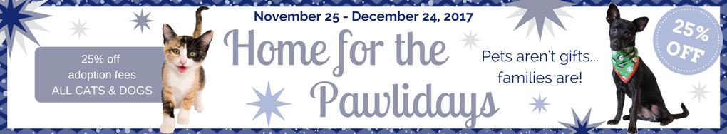 Pawliday_ Adopt a DogCat Banner