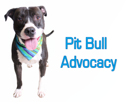 adult education seminars pit bull advocacy