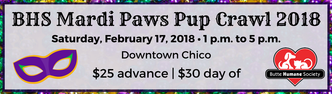 Mardi Paws Website