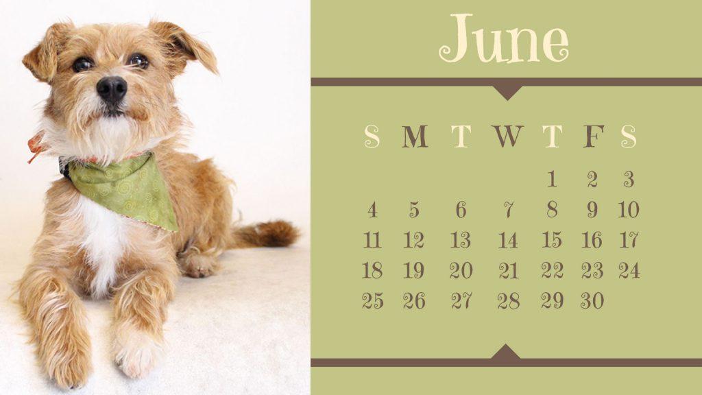 june-dog-calendar
