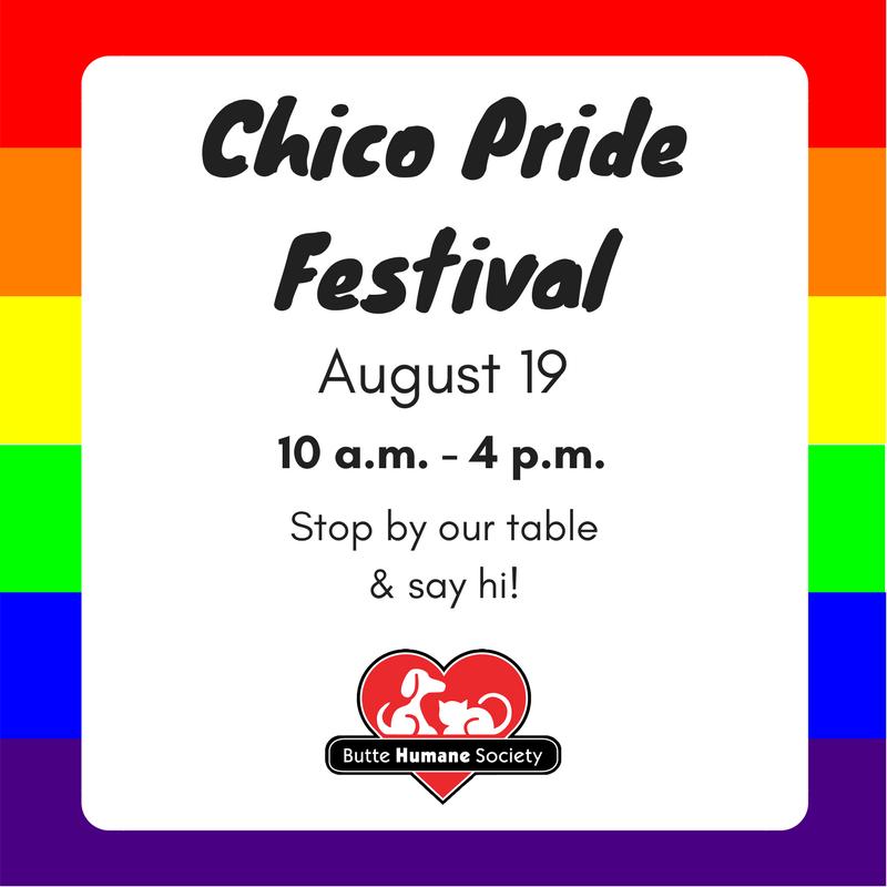 Chico Pride Festival