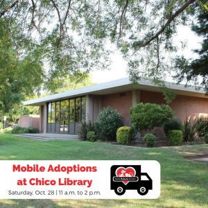 Mobile Adoptions- Chico Library