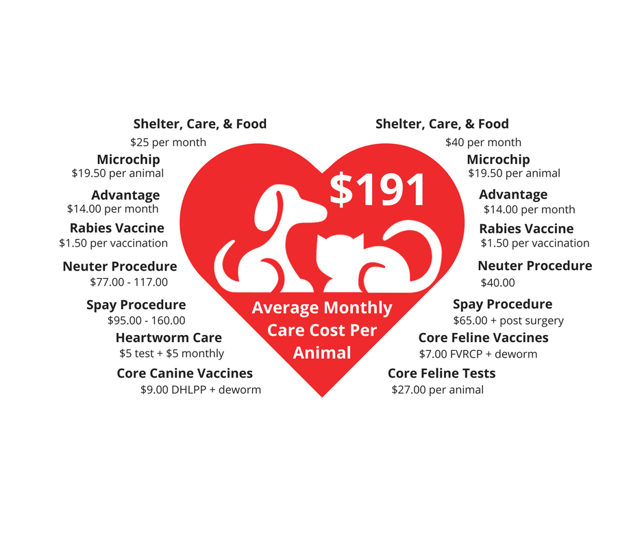 Core Care Costs graphic - DM