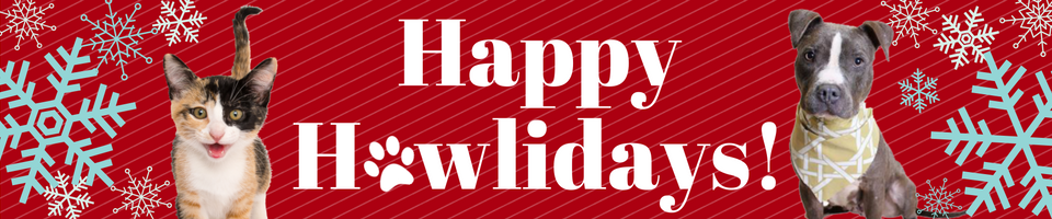 howliday-page-banner