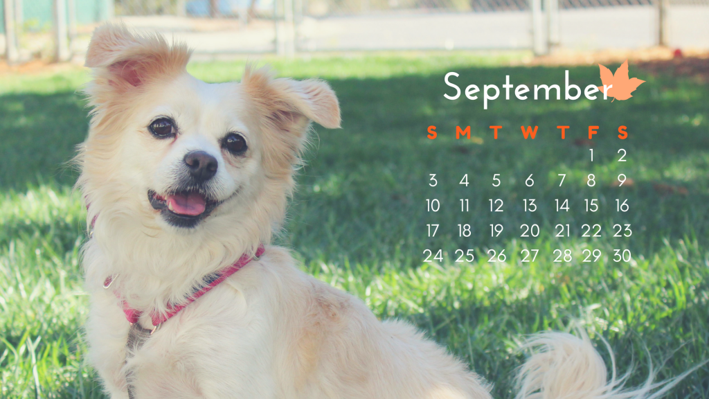 September Calendar_Sasha