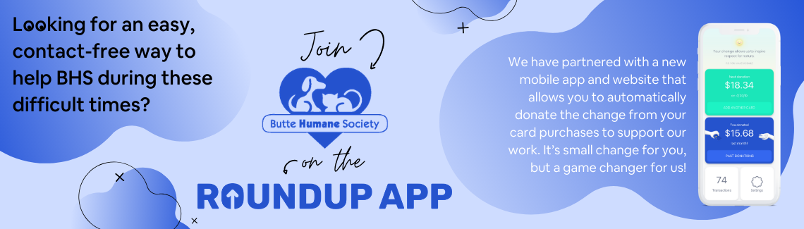 Join Roundup App
